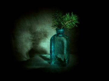 Little Pine (0009)