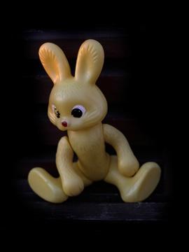 Bunny (0145)