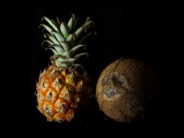 Pineapple and Coconut (0150)