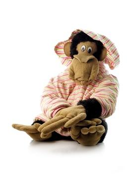 Monkey (0167)