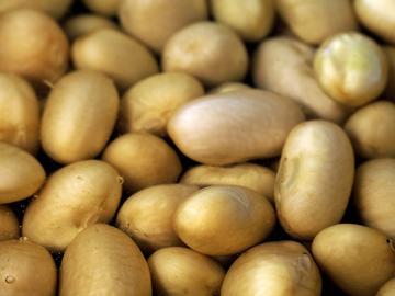 Beans (0211)