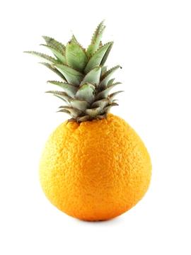 Orange (0255)